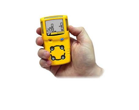 BW gas monitor